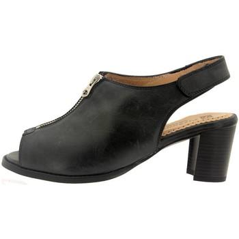 Chaussures Femme Sandales et Nu-pieds Piesanto 6485 Negro