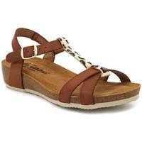 Chaussures Femme Sandales et Nu-pieds Carla Tortosa 27101 Marron