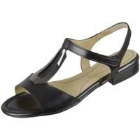 Chaussures Femme Sandales et Nu-pieds Ara Ega S Highoft Noir