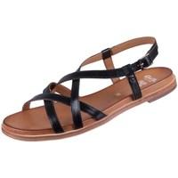 Chaussures Femme Sandales et Nu-pieds Ara 122810501 Noir