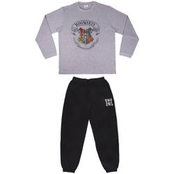 Vêtements Pyjamas / Chemises de nuit Harry Potter 2200006498 Gris