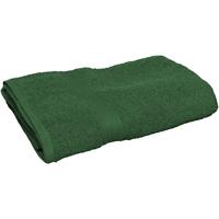 Maison & Déco Serviettes et gants de toilette Towel City 30 cm x 50 cm RW2880 Vert forêt