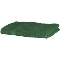 Maison & Déco Serviettes et gants de toilette Towel City RW1576 Vert sombre