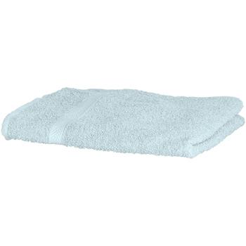 Maison & Déco Serviettes et gants de toilette Towel City RW1576 Turquoise