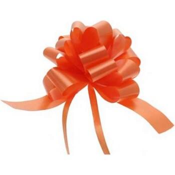 Maison & Déco Votre conseiller est en train décrire Apac Taille unique Orange