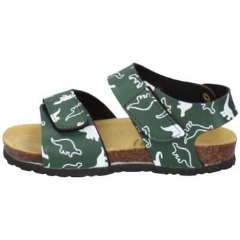 Chaussures Garçon Sandales et Nu-pieds Evoca EJ605A VERT