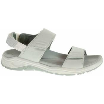 Chaussures Femme Sandales et Nu-pieds Ecco Xtrinsic W Gris