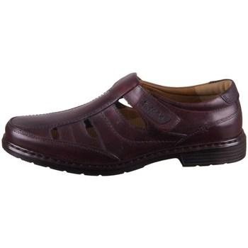 Chaussures Homme Derbies Josef Seibel Alastair 08 Marron