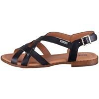 Chaussures Femme Sandales et Nu-pieds Pikolinos Algar Noir