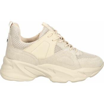 Chaussures Femme Baskets basses Steve Madden Sneaker Beige