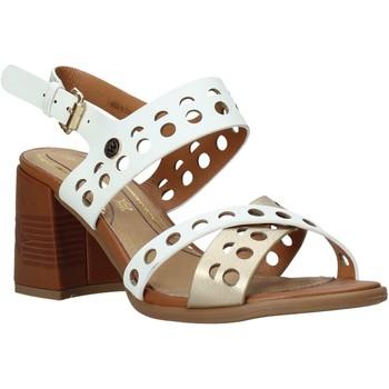Chaussures Femme Sandales et Nu-pieds Wrangler WL01572A Blanc