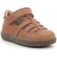 Chaussures Garçon Sandales et Nu-pieds Aster Waba Camel Marron