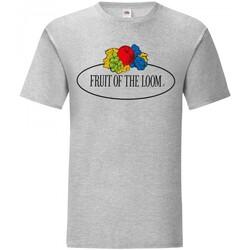 Vêtements Homme T-shirts manches courtes Fruit Of The Loom Leo Gris