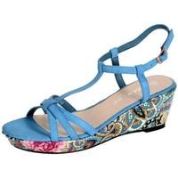 Chaussures Femme Sandales et Nu-pieds Enza Nucci Sandales Compensées QL1779 Bleu