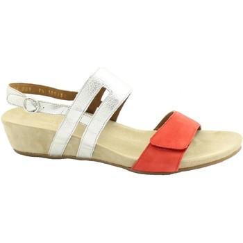 Chaussures Femme Sandales et Nu-pieds Benvado BEN-RRR-28021001-LF Laminato