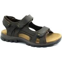 Chaussures Homme Sandales sport Grunland GRU-RRR-SA1855-TM Marrone