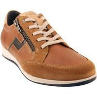 Chaussures Homme Derbies Fluchos Daniel-F0210 Marron