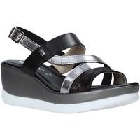 Chaussures Femme Sandales et Nu-pieds Valleverde 32151 Noir