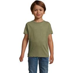 Vêtements Enfant T-shirts manches courtes Sols REGENT FIT CAMISETA MANGA CORTA Kaki