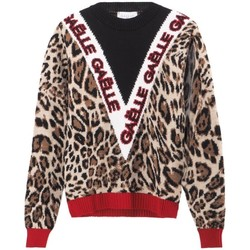 Vêtements Femme Pulls GaËlle Paris Pull ras du cou avec logo Lopard Jaune