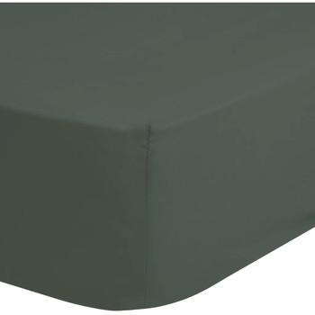Maison & Déco Draps housse Hip 100 x 200 cm Vert
