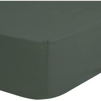 Maison & Déco Draps housse Hip Drap-housse 160 x 200 cm Vert