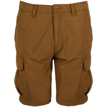 Vêtements Homme Shorts / Bermudas Napapijri  Marron
