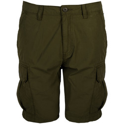 Vêtements Homme Shorts / Bermudas Napapijri  Vert