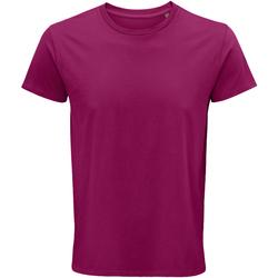 Vêtements Homme T-shirts manches courtes Sols 03582 Fuchsia