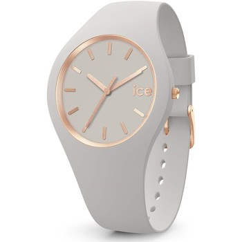 Montres & Bijoux Femme Montres Analogiques Ice Watch Montre  Ice Glam Brushed Wind Small Beige