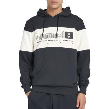 Vêtements Homme Sweats Hummel Musa hoodie Noir
