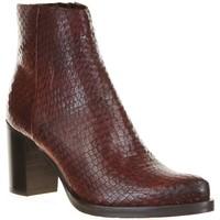Chaussures Femme Bottines Spaziozero NOEMI Marron