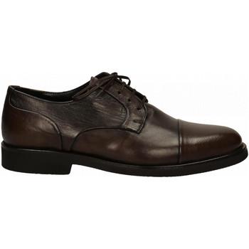 Chaussures Homme Derbies Edward's LIGHT testa-di-moro