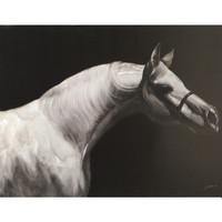 Maison & Déco Affiches, posters Amadeus Cades Toile cheval noir et blanc 120x90cm Noir et blanc