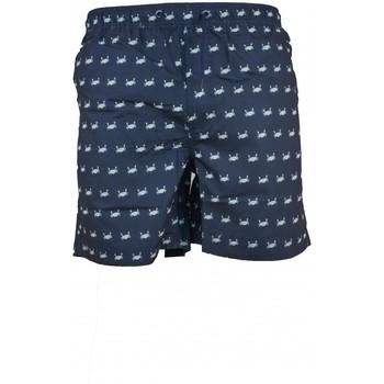 Vêtements Homme Maillots / Shorts de bain Torrente Ivo Bleu Crabe