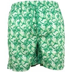 Vêtements Homme Maillots / Shorts de bain Torrente Ivo Vert Palmier