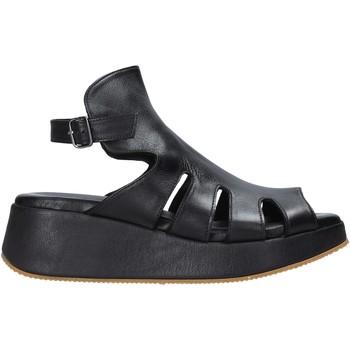 Chaussures Femme Sandales et Nu-pieds Sshady L2403 Noir