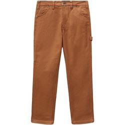 Vêtements Femme Pantalons 5 poches Dickies DK0A4XJHBD01 Marron