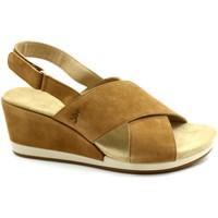 Chaussures Femme Sandales et Nu-pieds Benvado BEN-RRR-43002007-CU Marrone