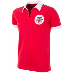 Vêtements Homme Polos manches courtes Copa SL Benfica 1962 - 63 Retro Football Red