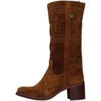 Chaussures Femme Bottes ville Dakota Boots C5 MARRON