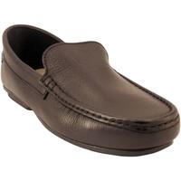 Chaussures Homme Mocassins Himalaya 1310-noir Noir