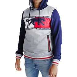 Vêtements Homme Sweats Airness CAYLER-HOODY Gris