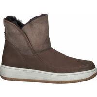 Chaussures Femme Boots Josef Seibel Bottines Braun