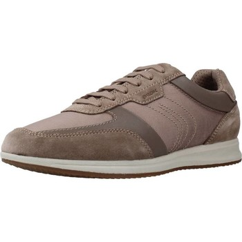 Chaussures Homme Baskets basses Geox U AVERY Brun