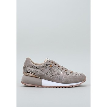 Chaussures Femme Baskets basses Gioseppo, S.l.  Beige