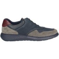 Chaussures Homme Baskets basses Notton 158 Bleu