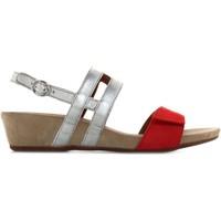 Chaussures Femme Sandales et Nu-pieds Benvado 28021001 Rosso / platino