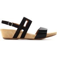 Chaussures Femme Sandales et Nu-pieds Benvado 28021004 Nero