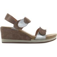 Chaussures Femme Sandales et Nu-pieds Benvado 43007003 Sabbia / platino